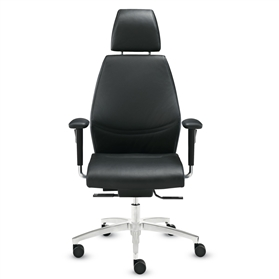 Dauphin Shape Executive Office Chair with Neckrest