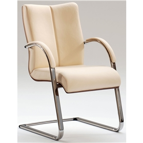 Hands Orion Classic Metal Cantilever Chair with Veneer Back