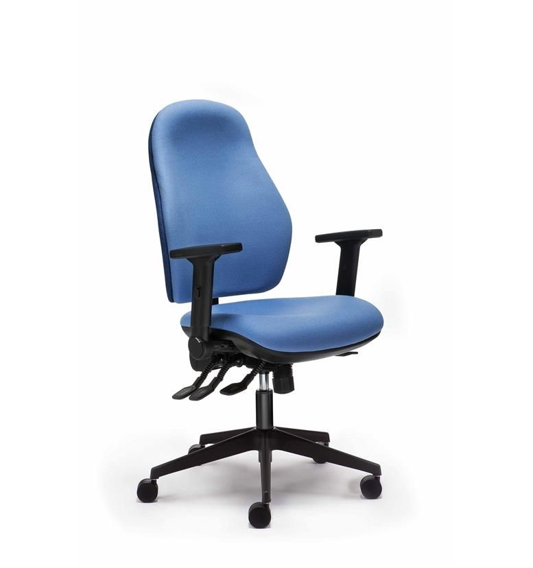 Torasen Orthopaedica 100Series Wider Back Task Chair