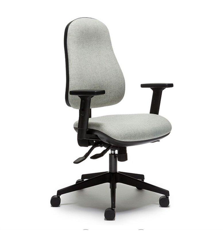 Back Care Office Chairs