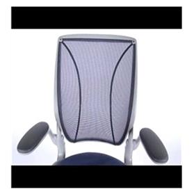 Humanscale Diffrient World Chair