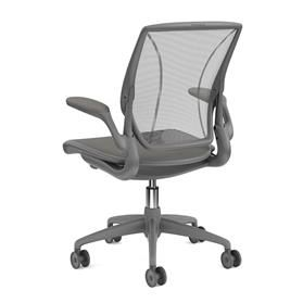 Humanscale Diffrient World Chair Grey and Graphite Back