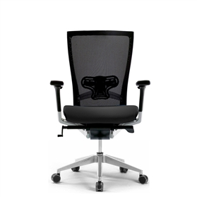 Techo Sidiz Mesh Office Chair with Lumbar