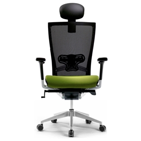 Techo Sidiz Chair with Headrest in Black & Green